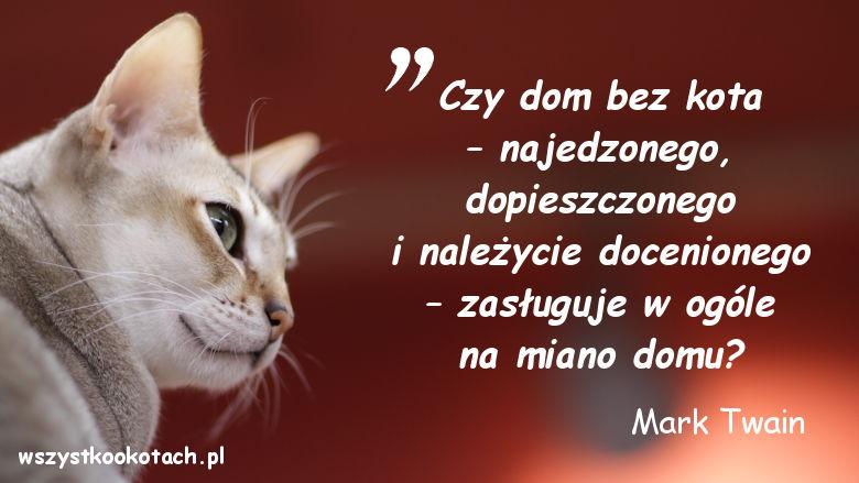 Cytaty o kotach - Mark Twain 2