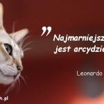 Cytaty o kotach - Leonardo da Vinci