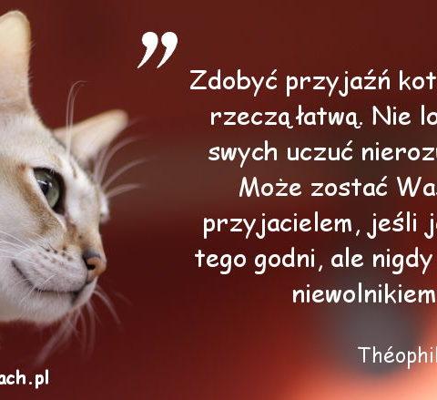 Cytaty o kotach - Théophile Gautier