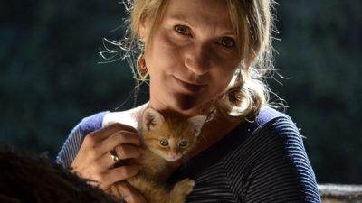 Kupić kota czy go adoptować?