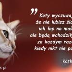 Cytaty o kotach - Kathy Young