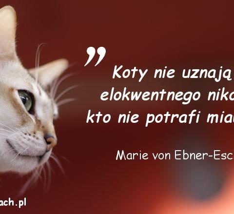 Cytaty o kotach - Marie von Ebner-Eschenbach