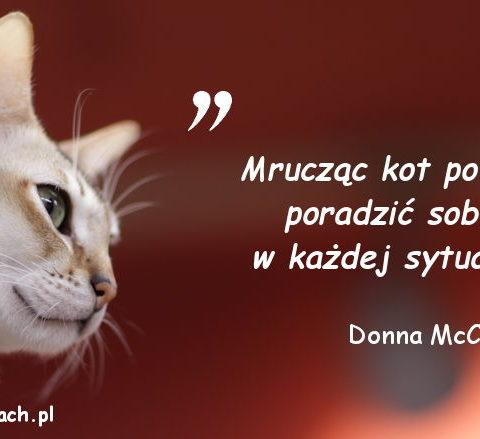 Cytaty o kotach - Donna McCrohan