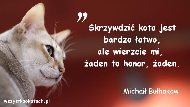 Cytaty o kotach - Michaił Bułhakow