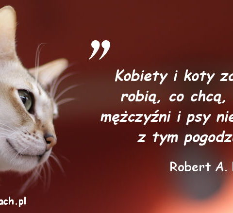 Cytaty o kotach - Robert A. Heinlein 2
