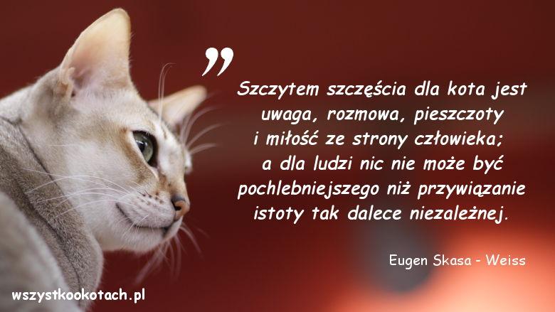 Cytaty o kotach - Eugen Skasa-Weiss-3