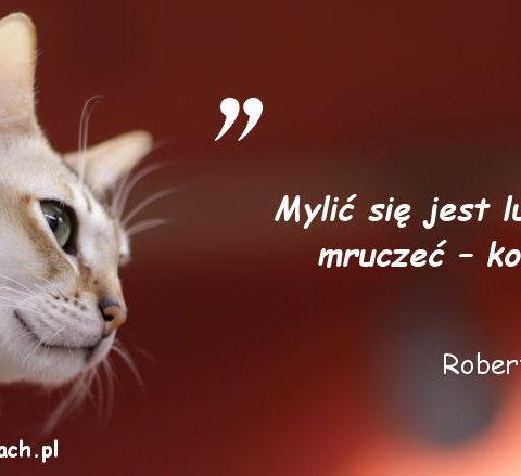 Cytaty o kotach - Robert Byrne