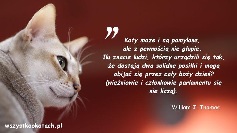 Cytaty o kotach - William J. Thomas