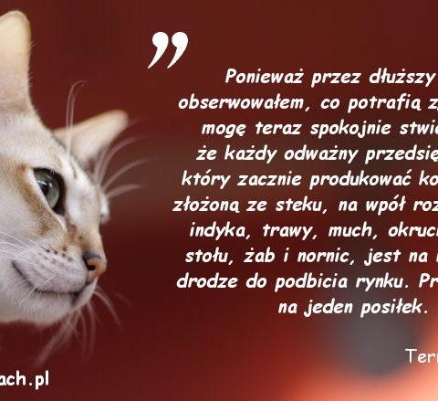 Cytaty o kotach – Terry Pratchet