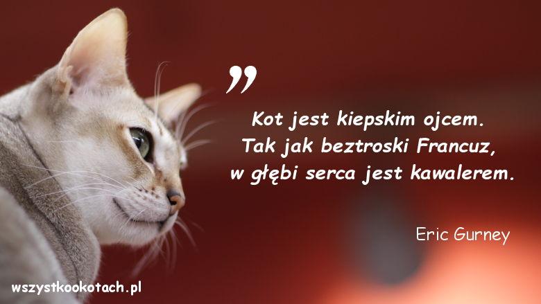Cytaty o kotach - Eric Gurney