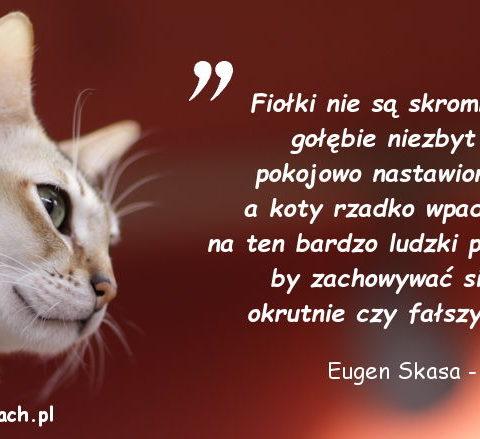 Cytaty o kotach - Eugen Skasa - Weiss