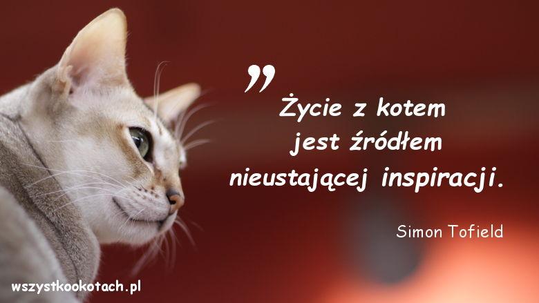 Cytaty o kotach - Simon Tofield