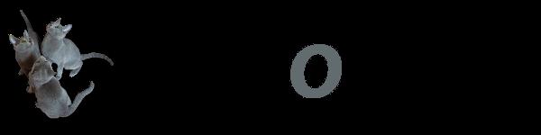 Wszystko o kotach - Logo - 600 pikseli