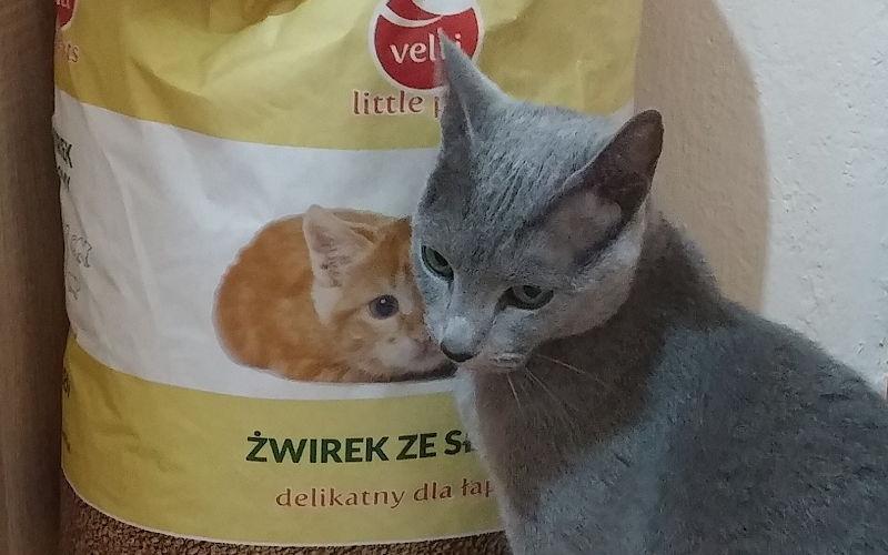Słomiany żwirek Velti dla kotów