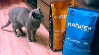 Sucha karma Naturea Cat & Kitten dla kotów