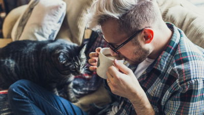 Dlaczego warto mieć kota?