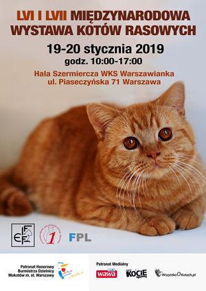 Wystawa Kotów Rasowych Warszawa Styczeń 2019