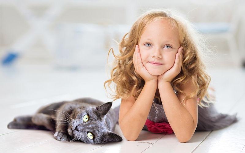 Koty dla dzieci – Które z kocich ras nadają się dla rodzin z dziećmi?