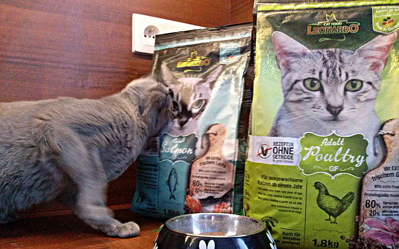 Sucha karma Leonardo dla kotów