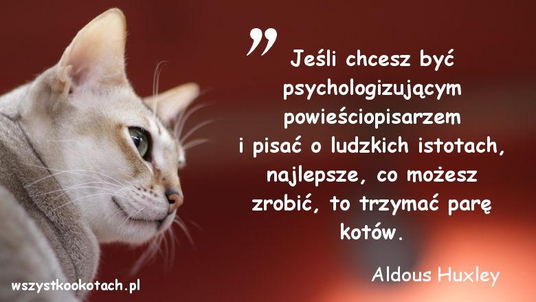 Cytaty o kotach - Aldous Huxley