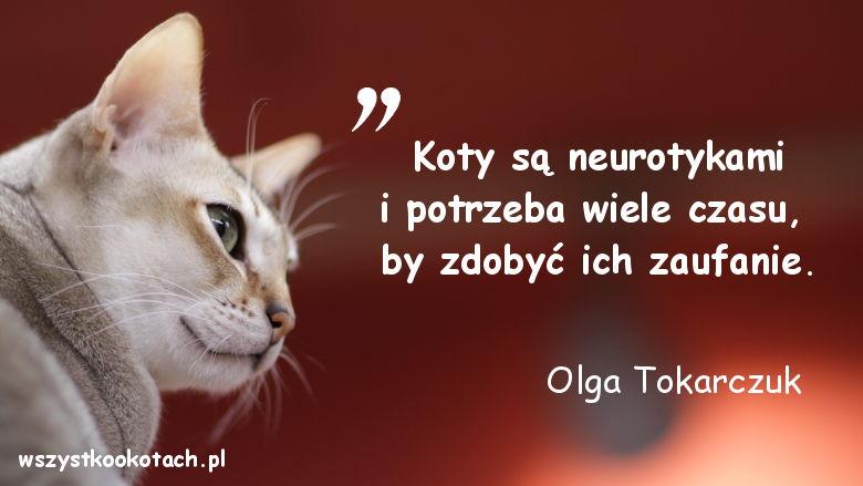 Cytaty o kotach - Olga Tokarczuk