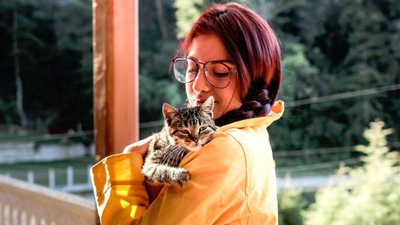 Dlaczego koty niektórych ludzi lubią bardziej od innych?