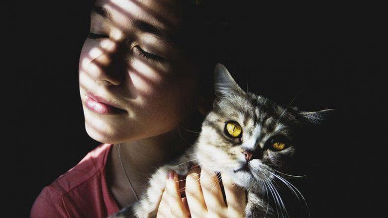 Dlaczego kochamy koty?