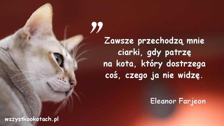 Cytaty o kotach - Eleanor Farjeon